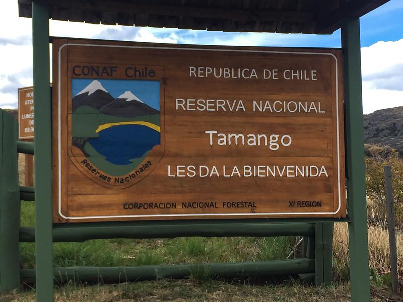 Patagonia18iphone-5812.jpg