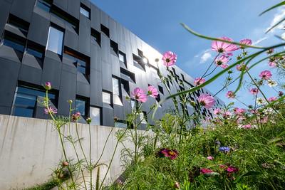Urban & Architecture
