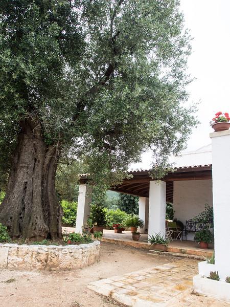 Lame di Galizia exterior 2.jpg