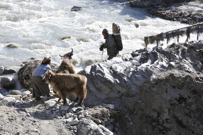 080518 2910 Nepal - Everest Region - 7 days 120 kms trek to 5000 meters _E _I ~R ~L.JPG