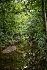 Banita Creek  (16)