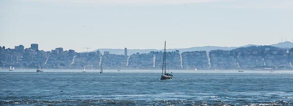Tiburon and Angel Island