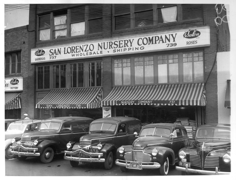 """""""The San Lorenzo Nursery Company building in Los Angeles.  The company is Japanese-owned.""""--caption on photograph"""