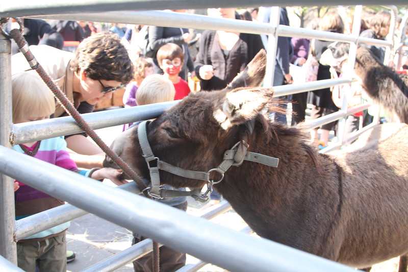 2011.10.23.Harvest Festival.f-31.jpg