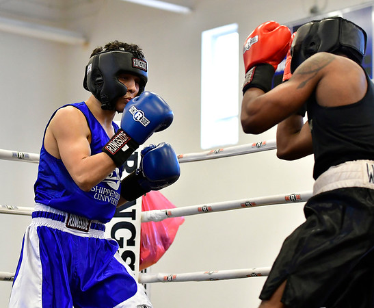 3/16/2019 Mike Orazzi | Staff West Points Lawrence Shepard (red) and Shippensburg Universitys Zaid Ahmed (blue) in a 147 match during the National Collegiate Boxing Association National Qualifier held at the Bristol Boys & Girls Club in Bristol, Conn. on Saturday.