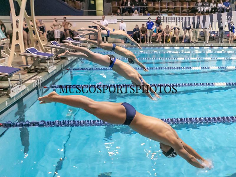 Swimming-diving vs Seton Hall_1053.jpg