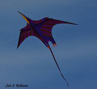 Pterosaur at Home