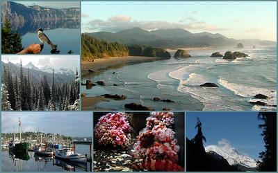 Oregon 1974 2001 2010 2012