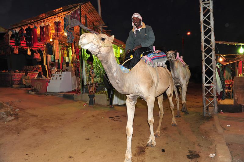 Egypt-149.jpg