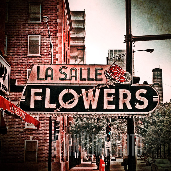 LaSalle Flowers