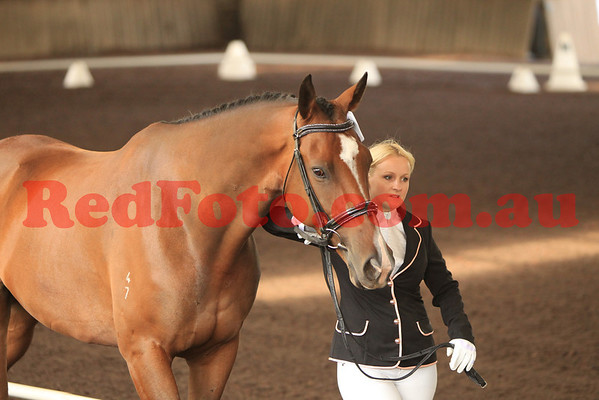 Karma Resorts 2014 Swan River Dressage Series March