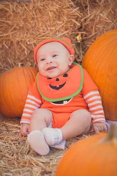 pumpkinpatrick-0008.jpg