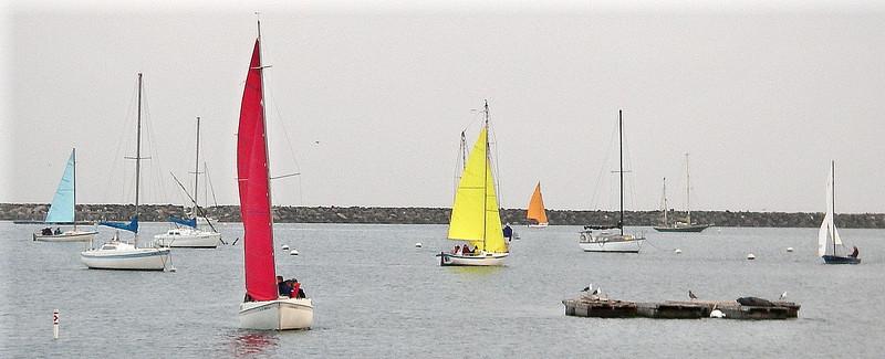 SailingClassOTW3.jpg