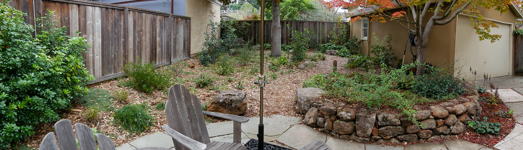 23 November 2017.  A late autumn panorama view straight back from the patio.  It's still open ... but way less bare than when just-planted a year ago.  It's a little scruffy, but then the wilds are a little scruffy this time of year too.