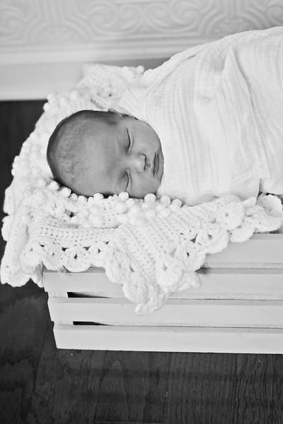 Douglas {Newborn}