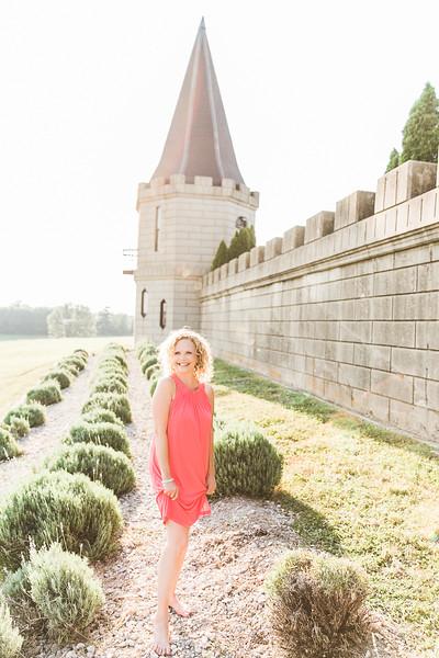 The Kentucky Castle