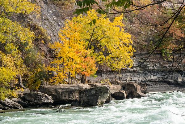 Niagara Falls Fall Colours