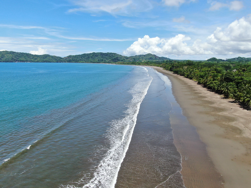 tropical beach with palm trees,tambor, Costa Rica