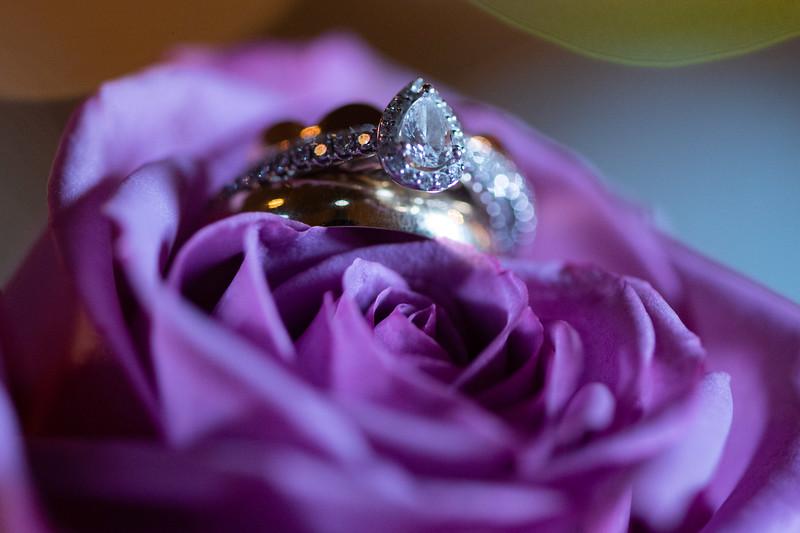wed (403 of 454).jpg