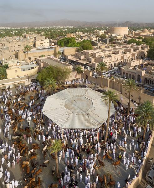 DJI_0046-Pano copy- Oman.jpg