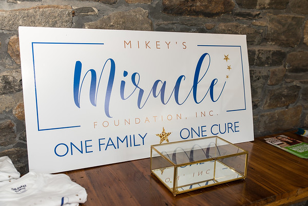 Mikey's Miracle Foundation Artifact