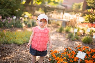 Harper - 18 Months