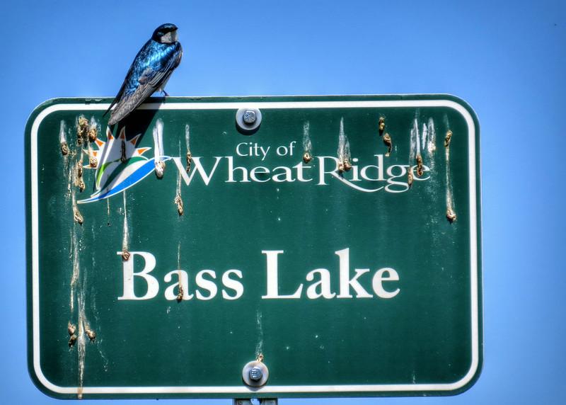 Local Hikes (537).jpg