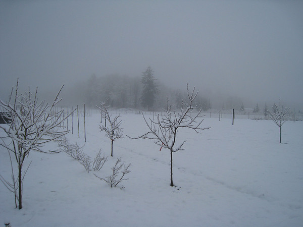 2012 - Four Spring Snow Storms in March