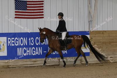 923 R13 Arabian SHUS Junior Horse