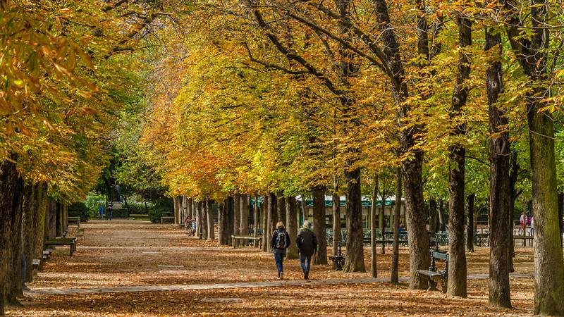 Walk in the Park, Paris. #Paris, #Autumn,