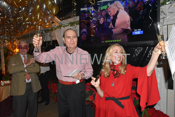 December 31, 2016 Loeb New Year's Eve Party