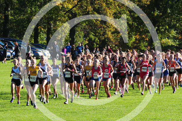High School & Middle School Girls Cross Country