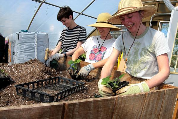 Whitemarsh greenhouse volunteers