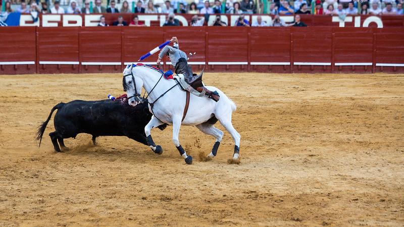 Bullfighting H40.jpg