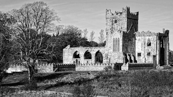 Tintern Abbey (Wexford) - 271012