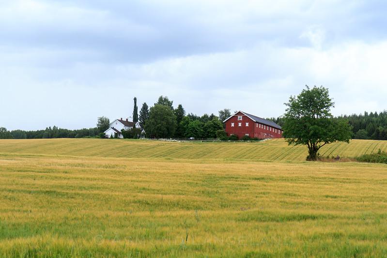 Søndre Rå gård
