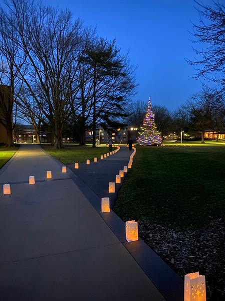 Calvin University Christmas Tree Lighting.jpg