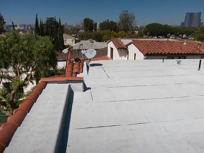 Brandon B. Roof