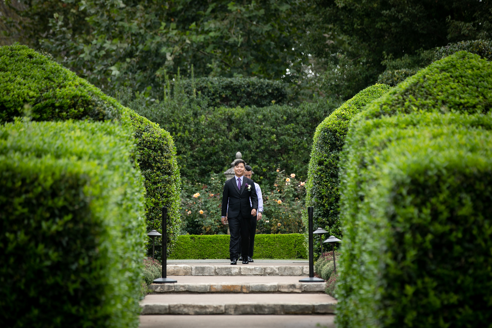 A groom walking down the aisle of his wedding through green hedges and gardens