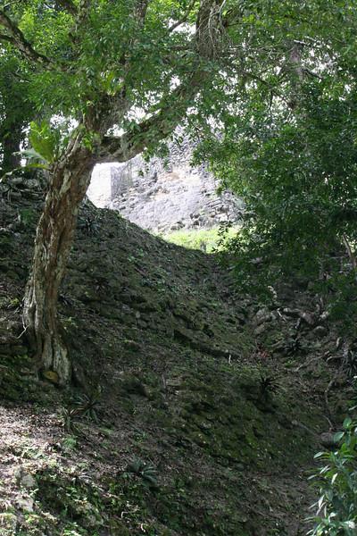 Guatemala Tikal 0 116.JPG