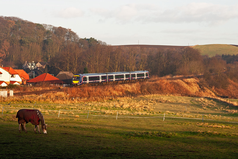 A horse grazes in the paddock beside the line at Markinch as an unknown turbostar passes through the station without stopping on an Aberdeen service 1A55 0910 off Edinburgh.  23/12/2005