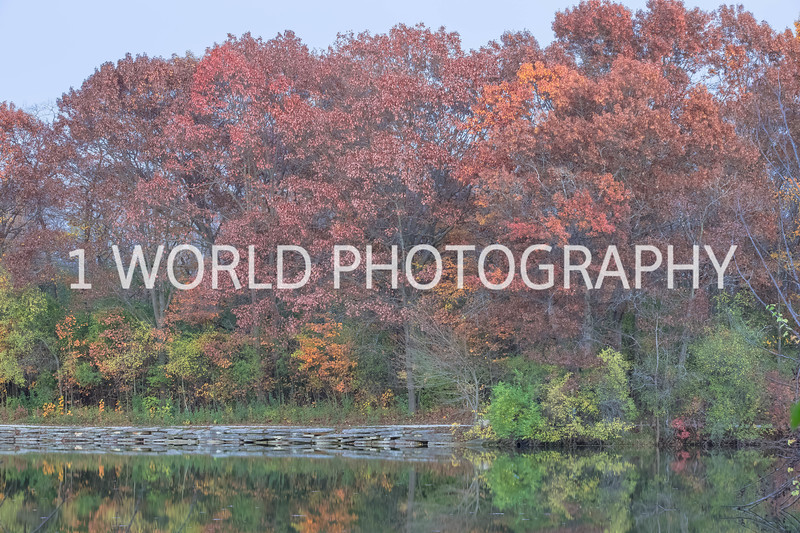 Herrick Lake FP Fall '16-5.jpg
