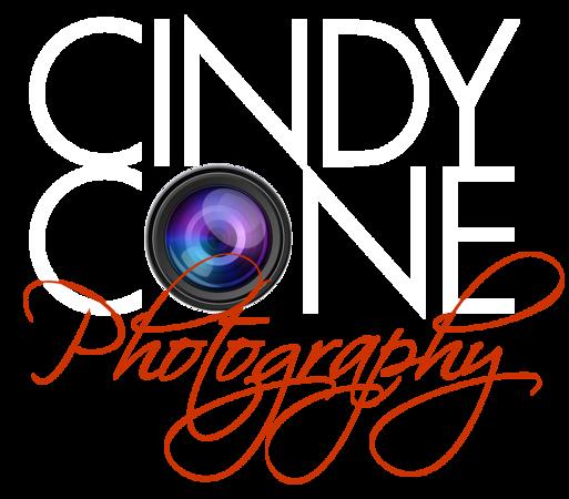 CC-logo_lens-(type-rasterized)-WHITE.png