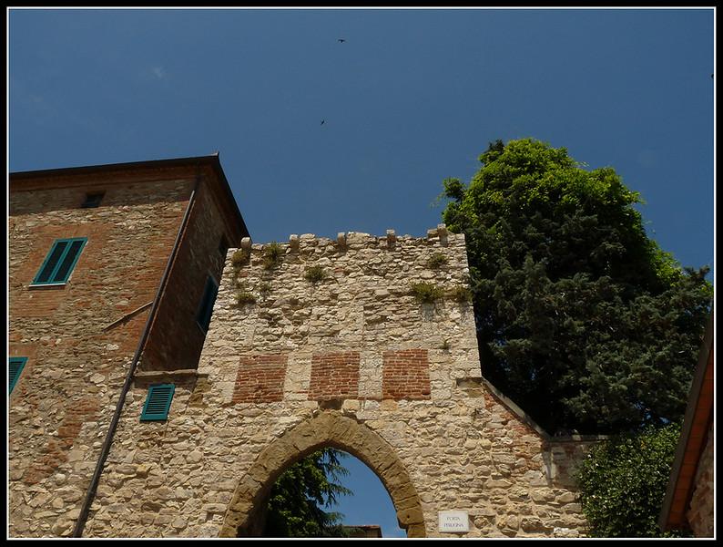 2009--06-UM-Castiglione-001.jpg