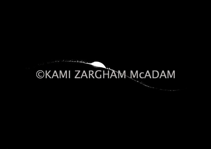 Shadow©Kami Z.McAdam 0017.jpg