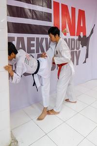INA Taekwondo Academy