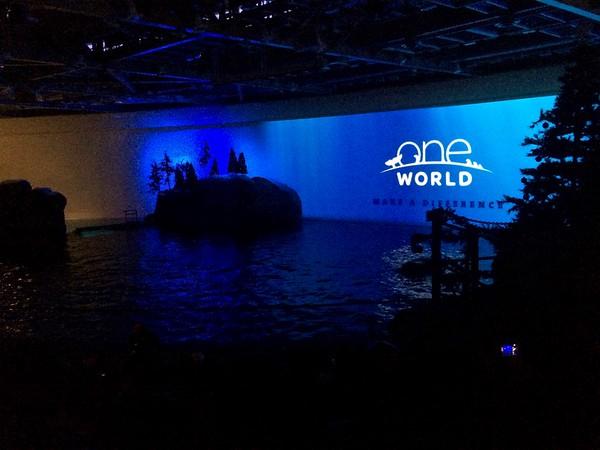 Shedd Aquarium, November 25, 2016
