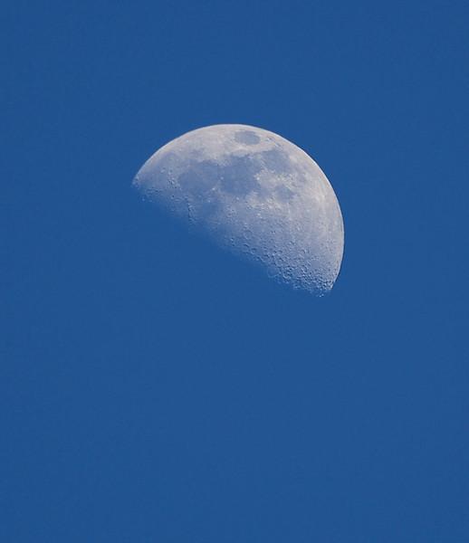 moon 3-4-09.jpg