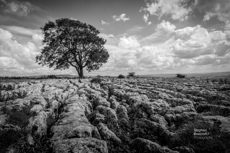 Yorkshire Landscapes - 23rd July 2017