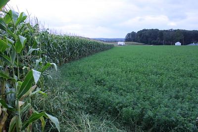 FARMS-BALTIMORE COUNTY
